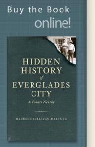 Hidden History series
