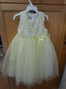 Emerson's dress