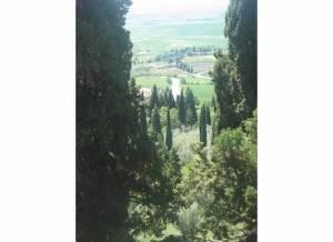 Near Montalcino, Italy